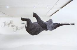 Vue de l'exposition « Happy Birthday galerie Perrotin » organisée par Lille 3000 : l'éléphant en fibre de verre de Daniel Firman côtoie « Life is beautiful » de Farhad Moshiri.