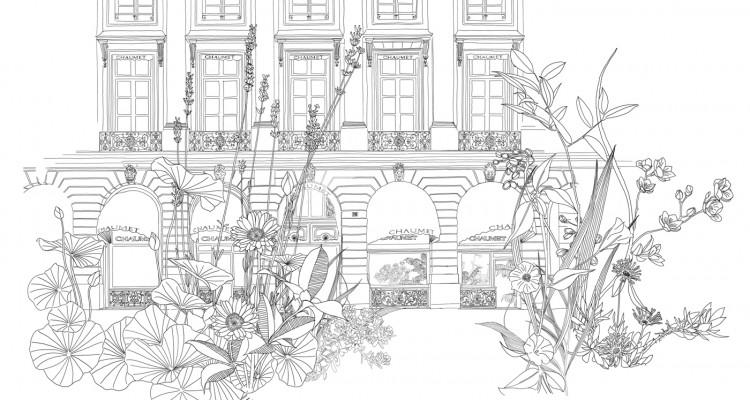Invit-Vendome-HD-Plantes