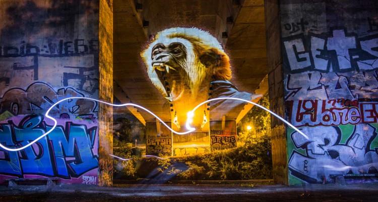 37-Gibbon_RGB