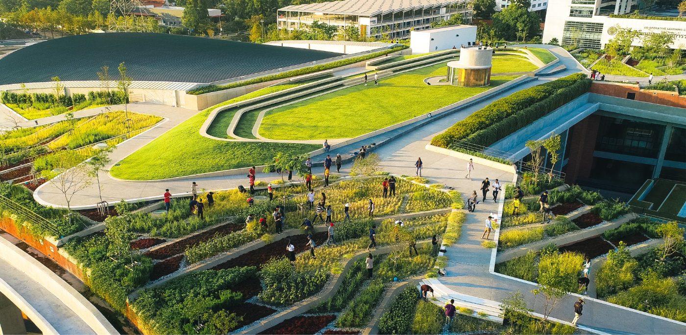 landprocess urban rooftop farm bangkok